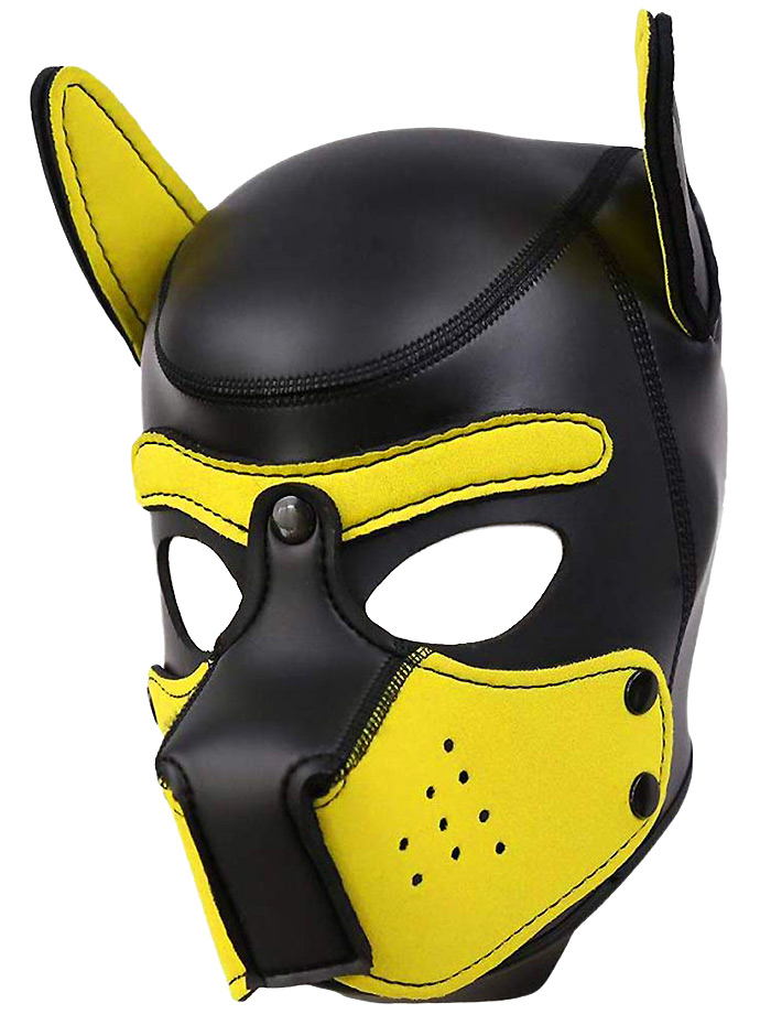 Pupplay Dog Mask - Black/Yellow